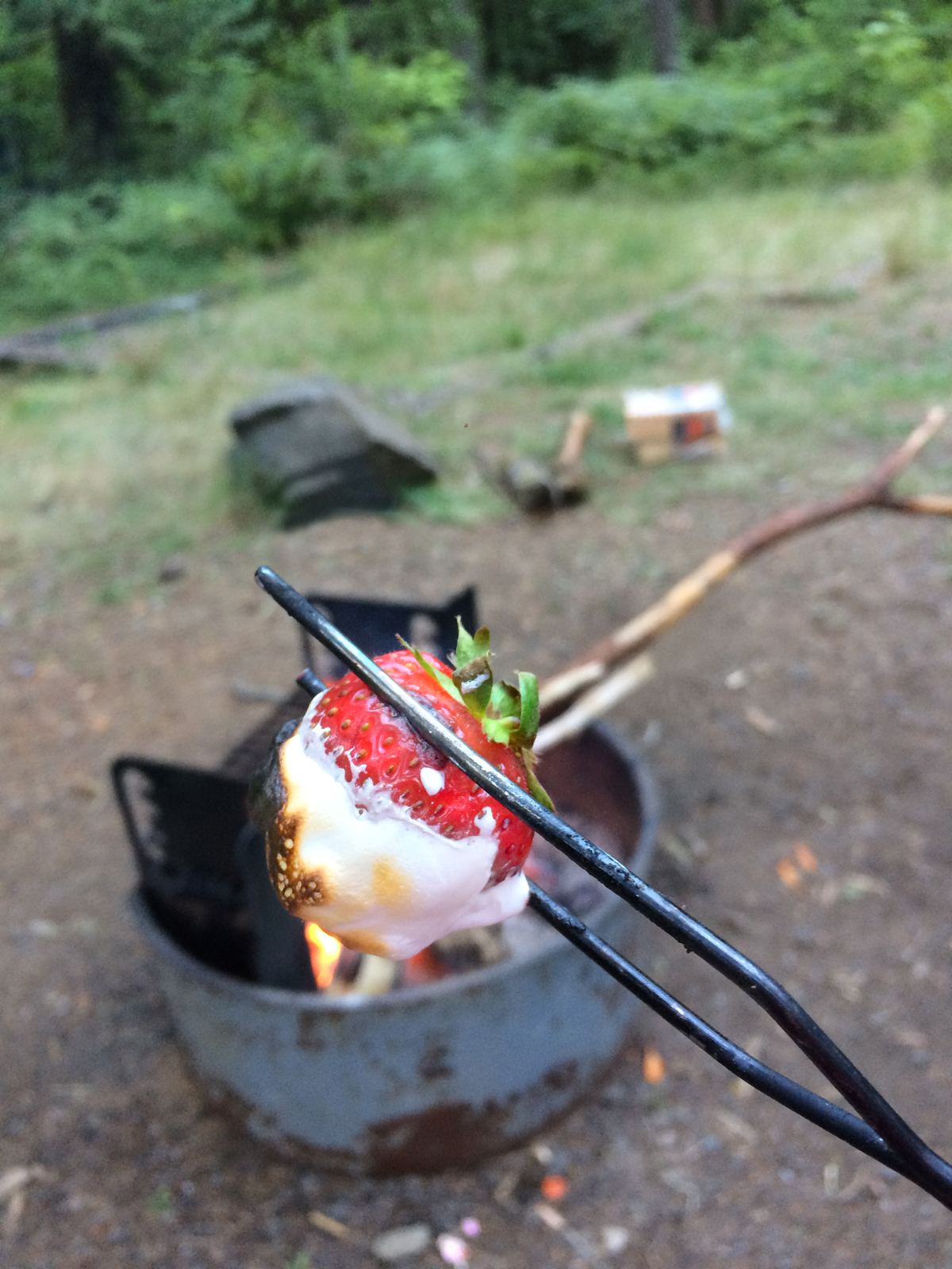 Strawberries and marshmallow fluff roasted over a campfire