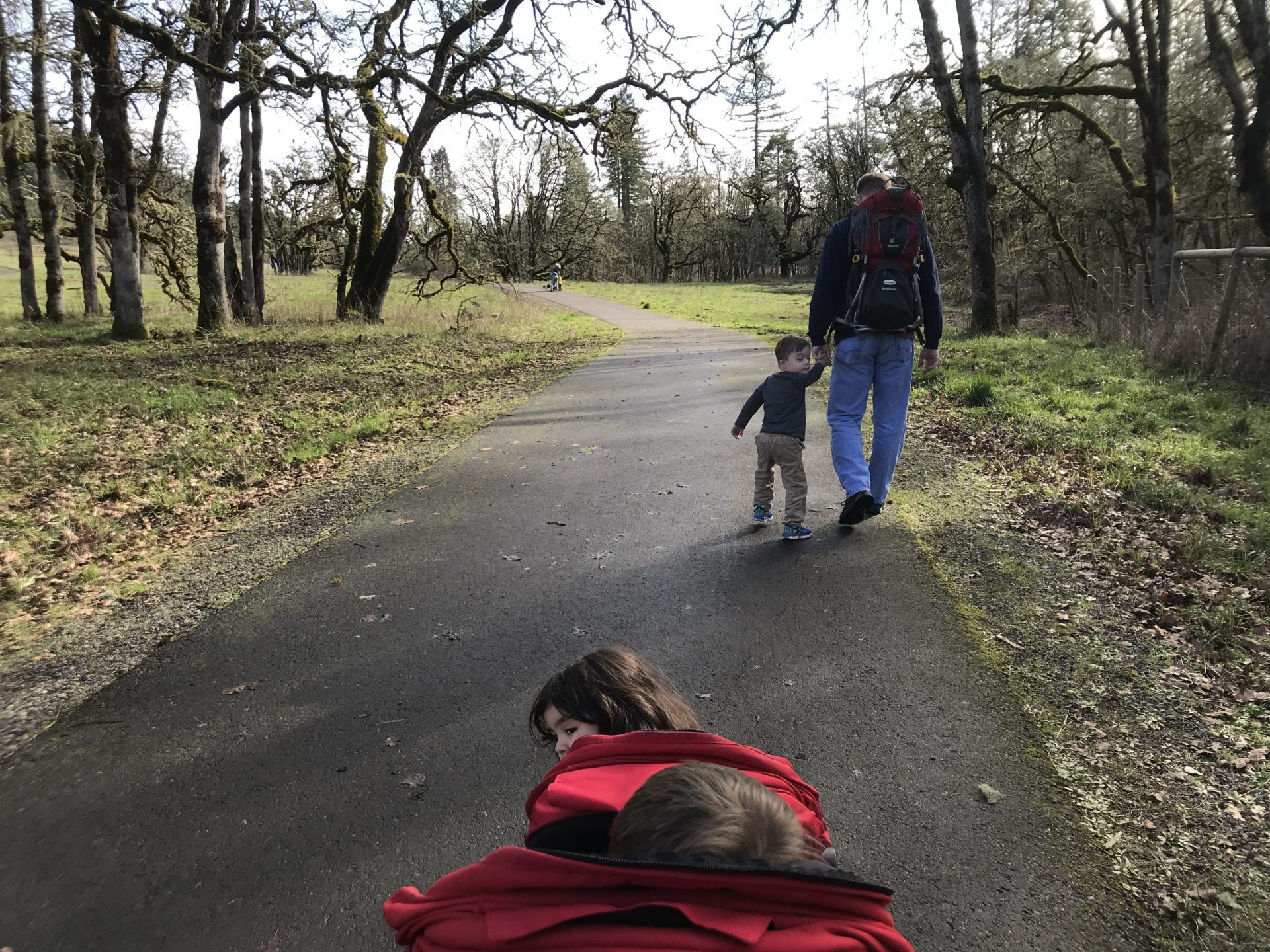 Best winter hikes near Eugene with strollers and kids