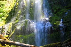 Hike to the bottom of Proxy Falls for a beautiful view