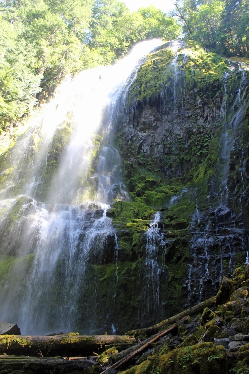 Proxy Falls spreads out at its base