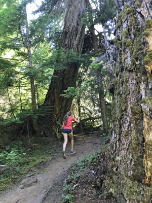 Girl runs through old growth douglas fir trees along a trail