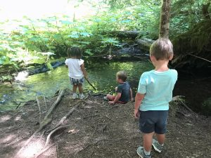 Children play in the creek below Proxy Falls