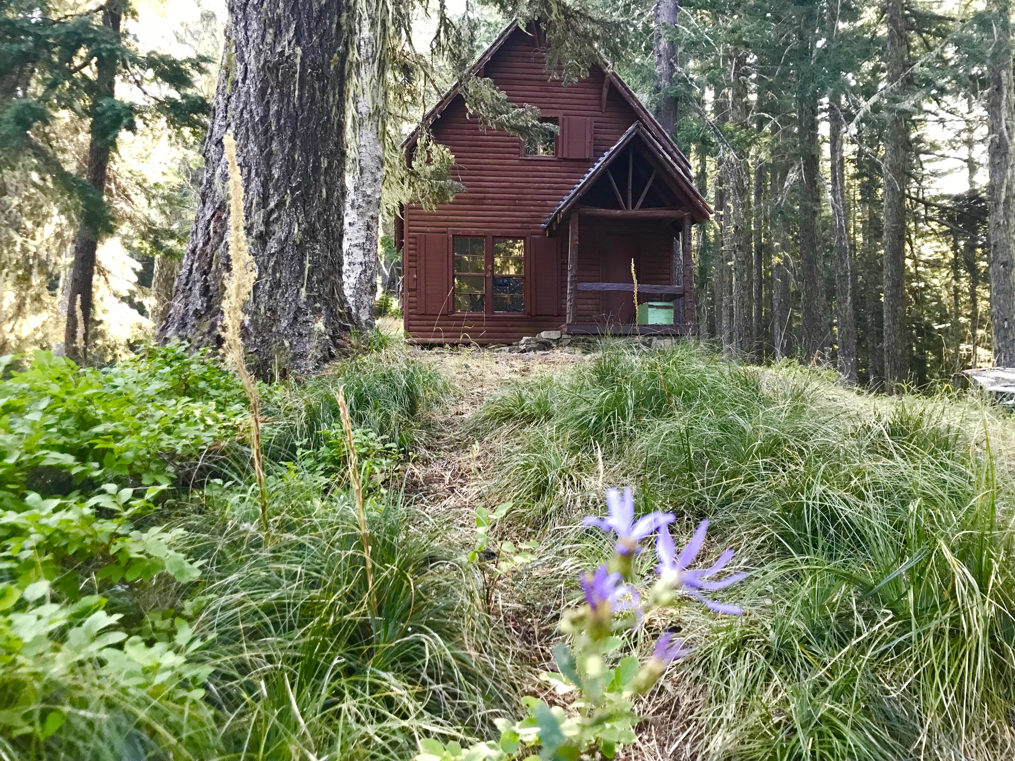 Musick Guard Station - a rental cabin in the Forest Service recreation program