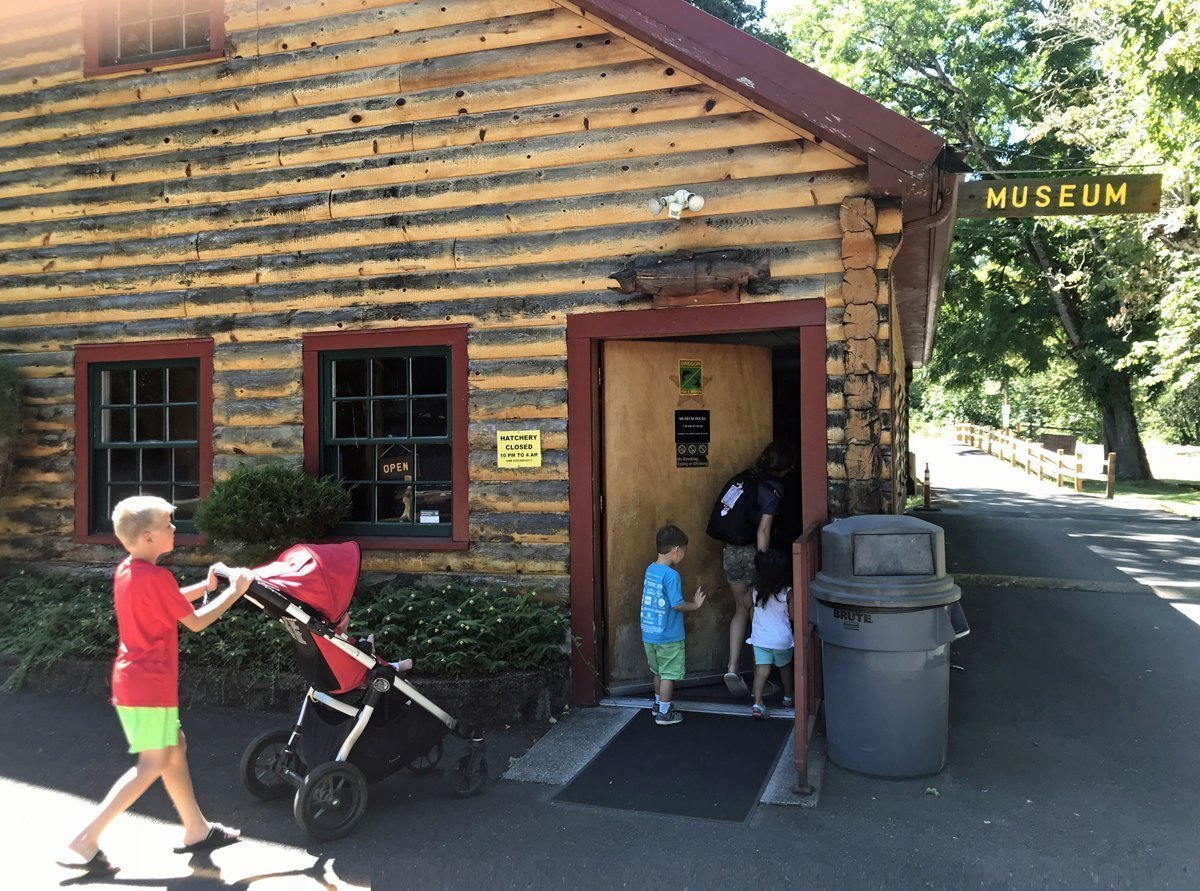 Willamette Fish Hatchery in Oakridge - museum