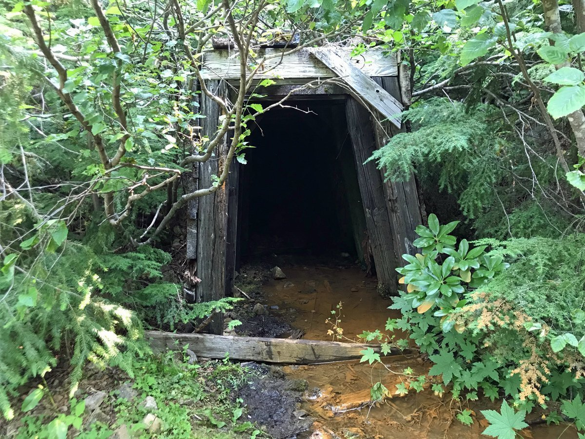 Entrance to Vesuvius Gold Mine on Bohemia Mountain in Oregon
