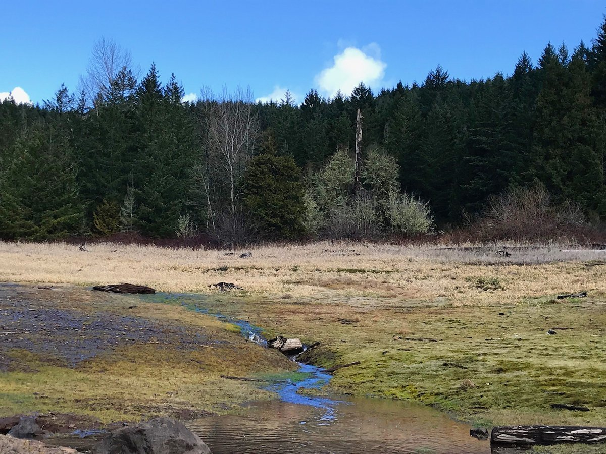 Tiny stream flowing into Fall Creek Reservoir