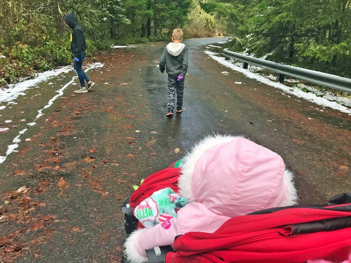 Taking a stroller on a winter hike at Fall Creek Lake