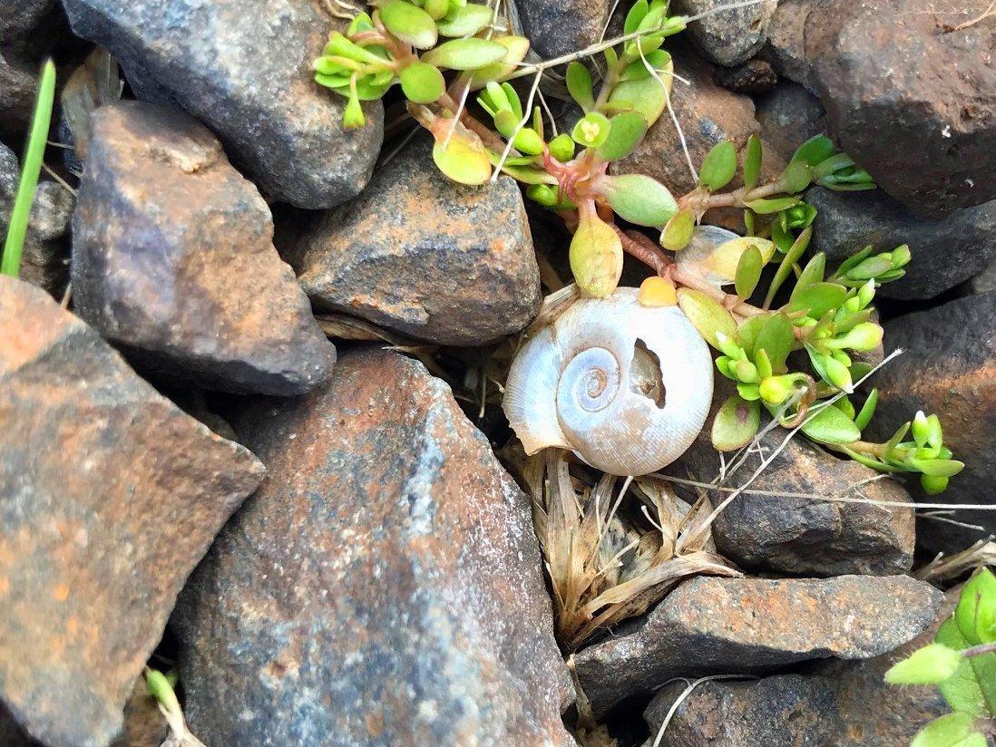 Hiking at Fall Creek in Oregon