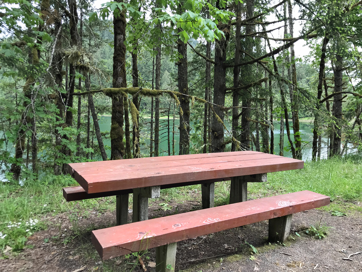 Picnic tables overlooking Lookout Point Lake at Hardesty Mountain trailhead