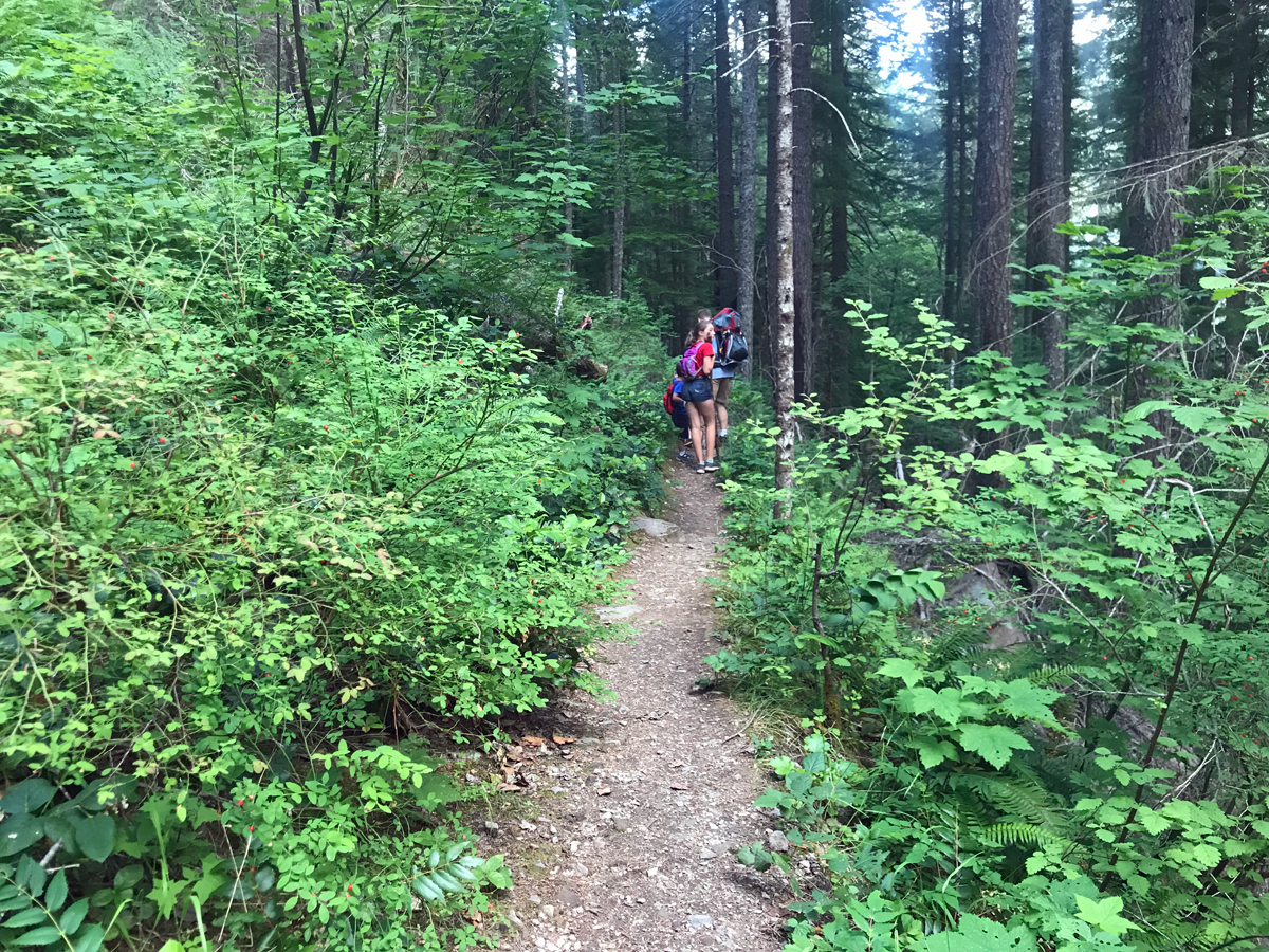 Trail to Henline Falls and Silver King Mine in Oregon