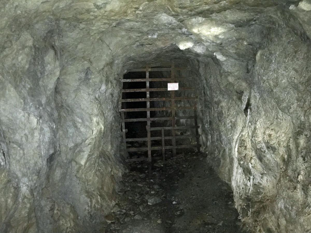 Bat gate inside Silver King Mine in Oregon
