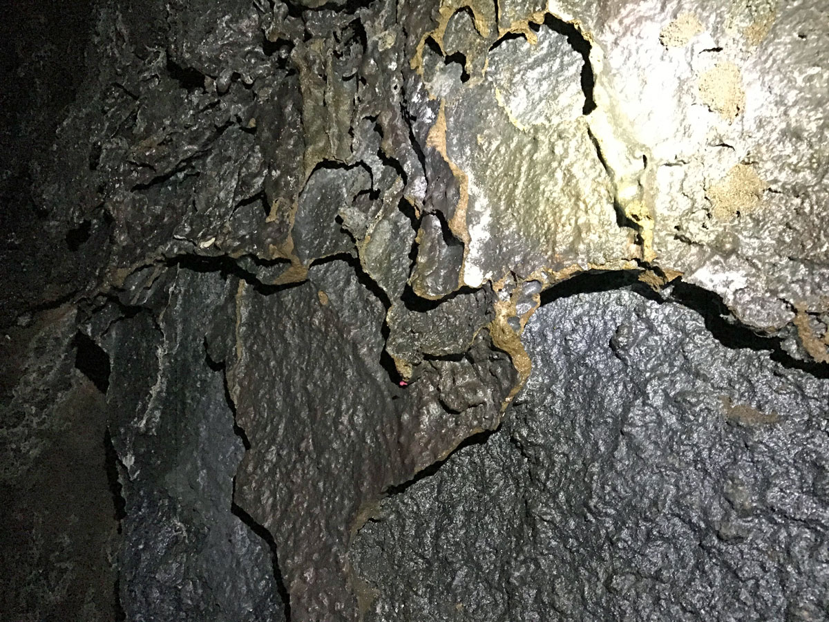 Unique layered formations on the walls of Lave River Cave in Oregon
