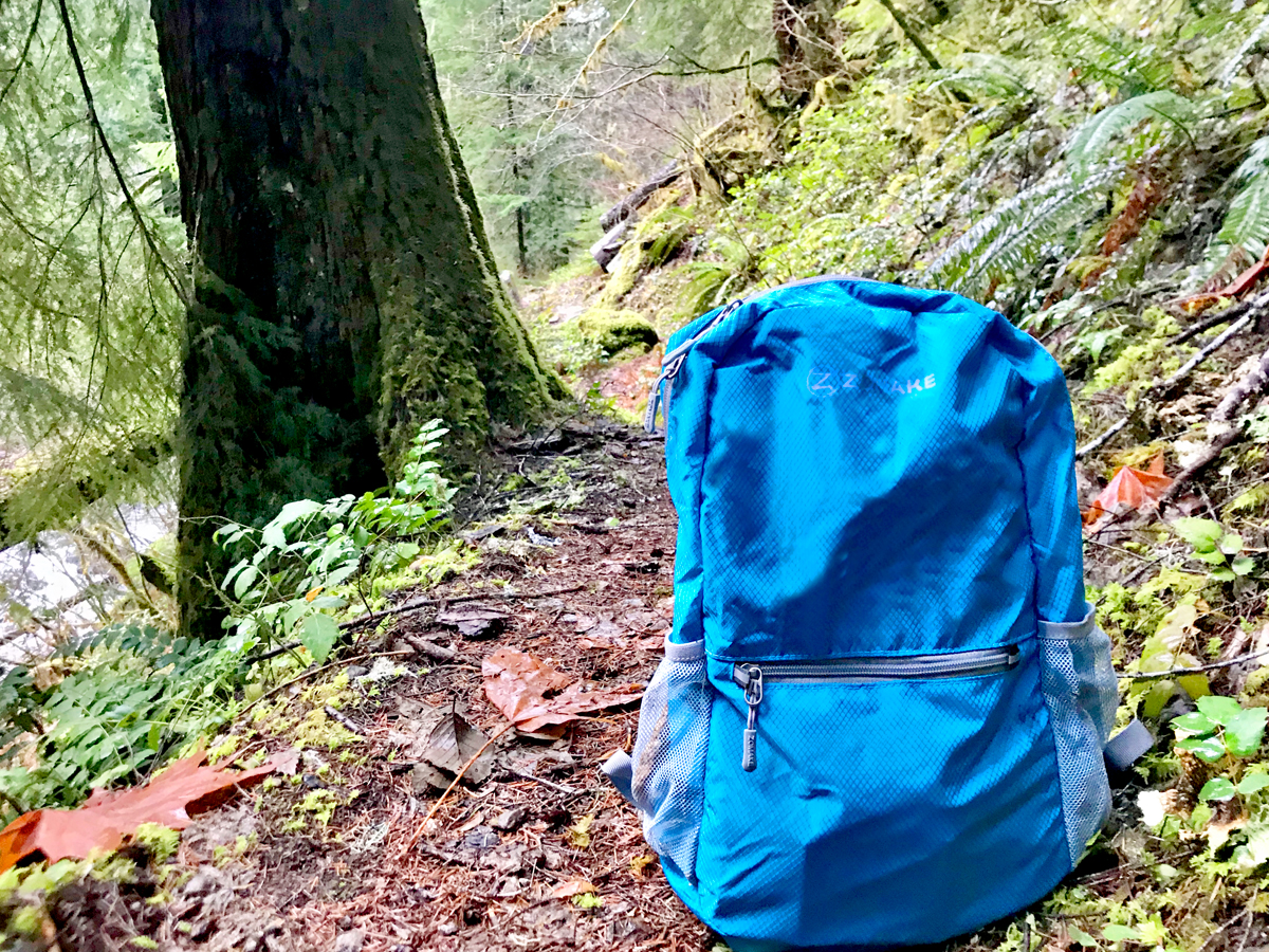 Backpack for the 10 Essentials for a short day hike