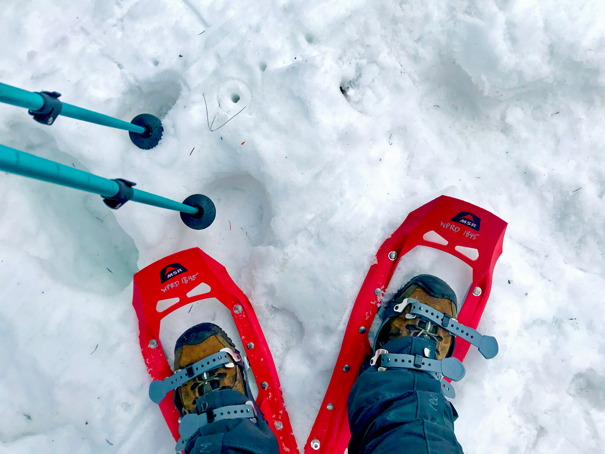 We went snowshoeing at Gold Lake Sno-Park with Willamalane Parks & Rec
