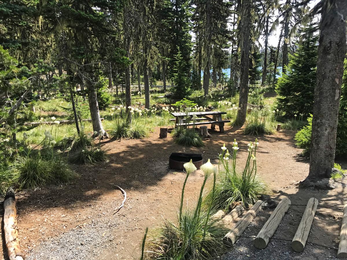 Big Lake Oregon Campground