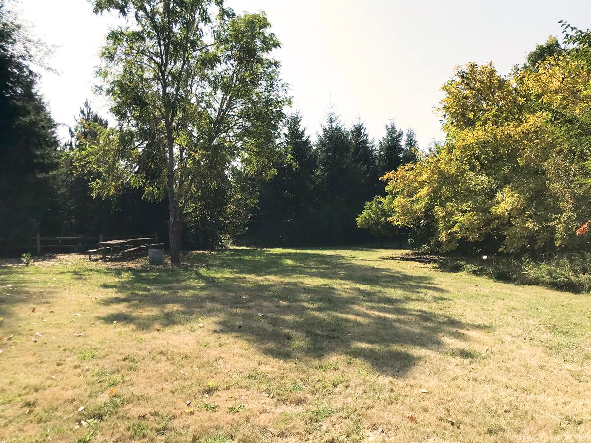 Ruff Park in Springfield, Oregon