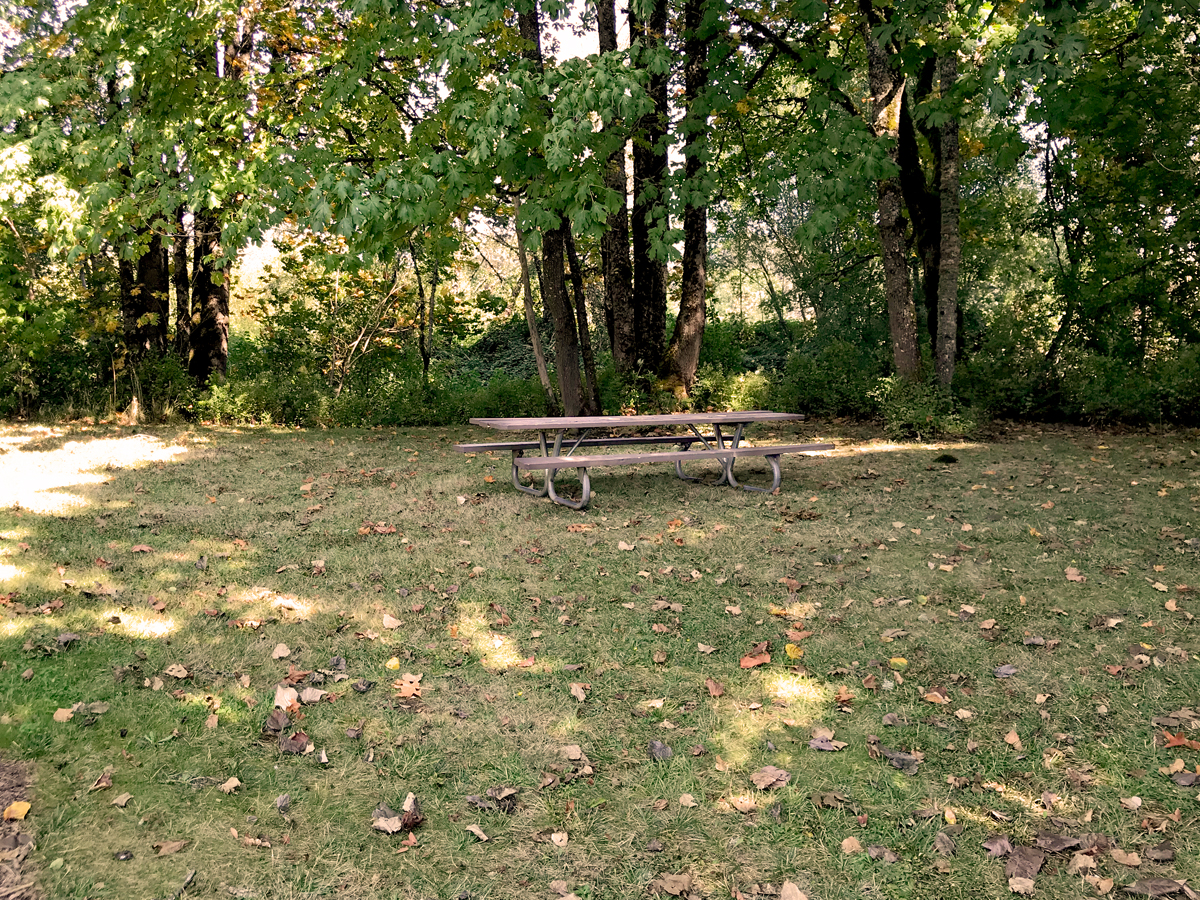 Picnic table in Ruff Park, Springfield
